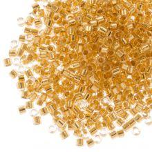 Miyuki Delica (11/0 mm) 24kt Gold Lined Crystal (10 Gramm)