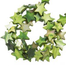 Muschelperlen Stern (11 mm) Green (38 Stück)