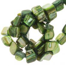Muschelperlen (8 x 8 mm) Green (48 Stück)