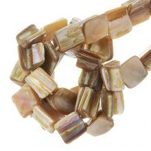 Muschelperlen (8 x 8 mm) Brown (48 Stück)