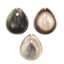 Muschel Charm (12 x 10 x 2.5 mm) Black Lip Shell (3 Stück)