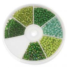 Perlenset - Rocailles Green (3 mm) 'Mix Color'