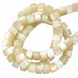 Muschelperlen (3.5 x 2.5 mm) Pale (140 Stück)
