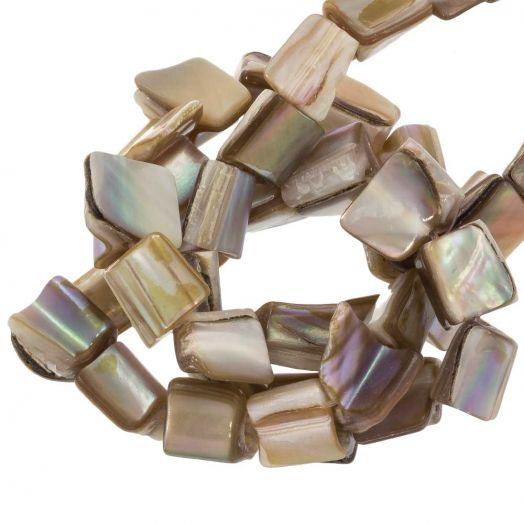 Süßwasserperlen - Muschelperlen (10 x 8 mm) Tan (48 Stück)