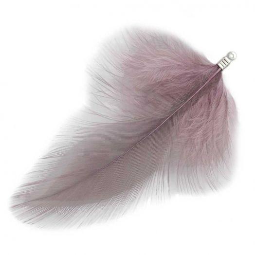 Schmuckfedern (7 cm) Mountbatten Pink (10 Stück)