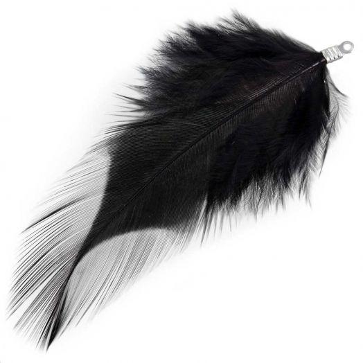 Schmuckfedern (7 cm) Black (10 Stück)