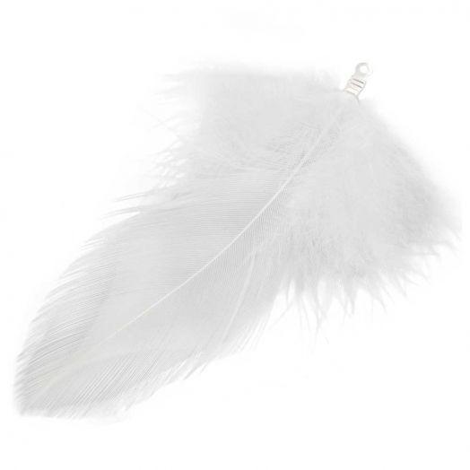Schmuckfedern (7 cm) White (10 Stück)