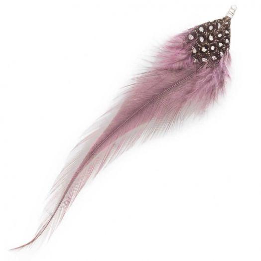 Schmuckfedern (10 cm) Dots Mountbatten Pink (10 Stück)