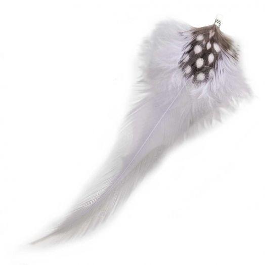 Federn mit Punkten (10 cm) Light Lilac (10 Stück)