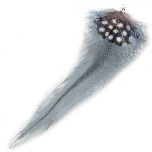 Federn mit Punkten (10 cm) Blue Grey (10 Stück)
