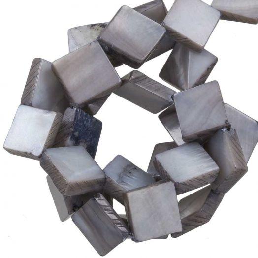 Süßwasserperlen - Muschelperlen (10 x10 mm) Light Grey (35 Stück)