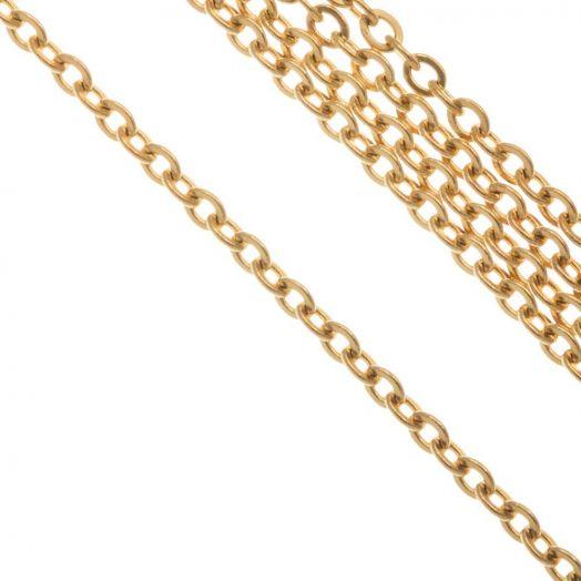 Edelstahl Gliederkette (2.5 x 2 x 0.5 mm) Gold (10 Meter)